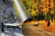 Осень, осень, золотая пора